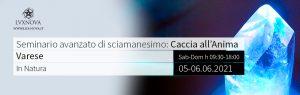 Seminario avanzato di sciamanesimo-recupero-Anima Varese 05 giugno 2021