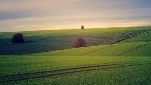 Meditazione per la terra