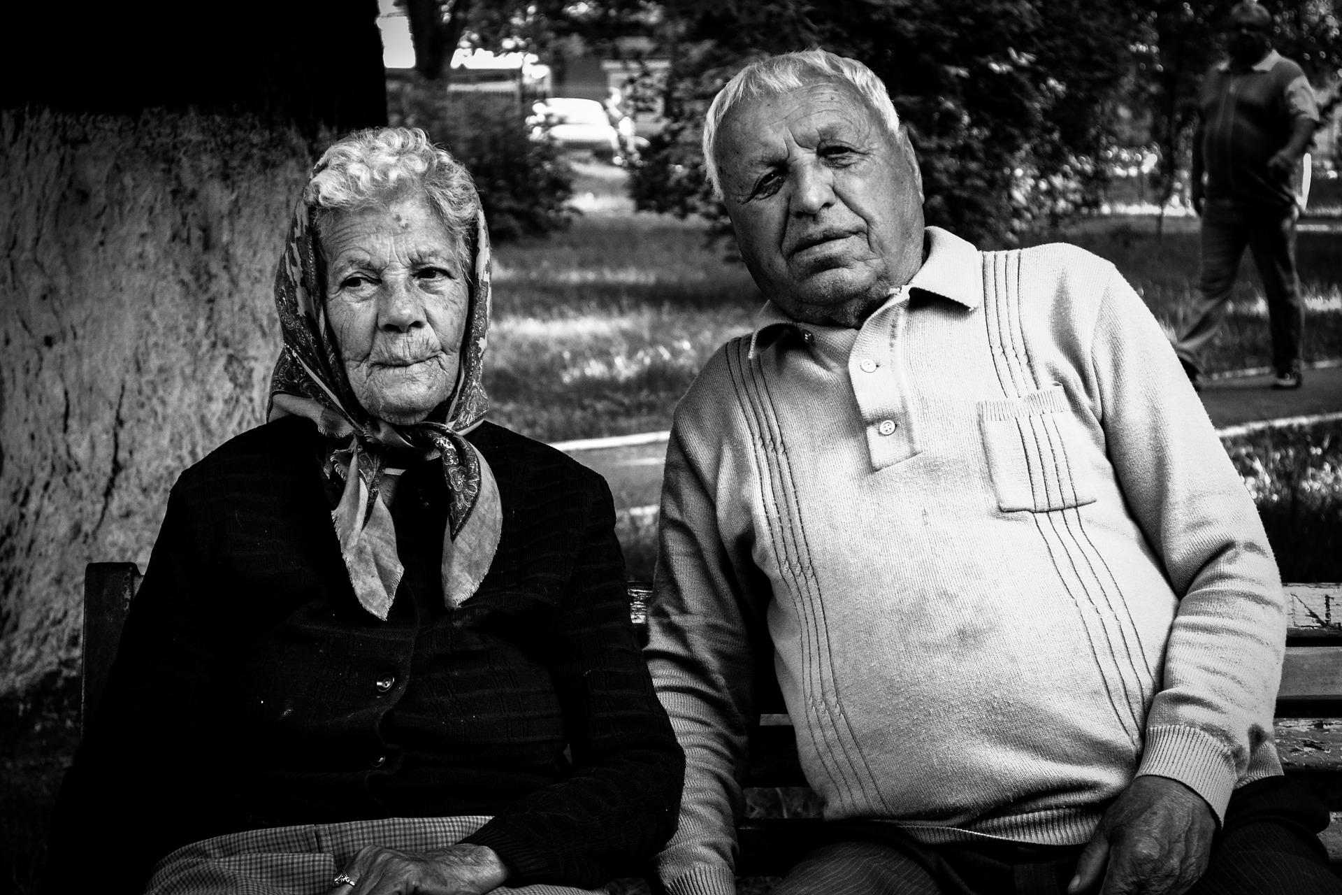 Questa radice biforcata dal lato destro rappresenta il nonno paterno e la nonna paterna